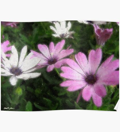 Purple and White Daisies 1 Watercolor Poster