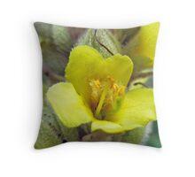 Great Mullein Wildflower - Verbascum thapsus Throw Pillow