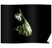 Garlic and snails.. Poster