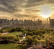City, Park, and Morning Sunrise by dlwjiang