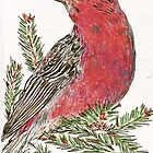 Pine Grosbeak by Lynda Earley