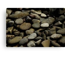 stones of pele Canvas Print