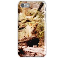 Curious Cub iPhone Case/Skin