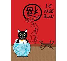 Le Vase Bleu (the blue vase) Photographic Print