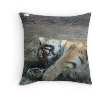 Kitty Playing Throw Pillow