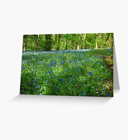 Spring Wood Greeting Card