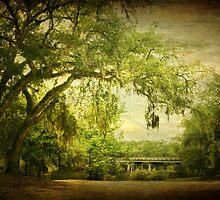 Parker Lake Bridge by Jonicool