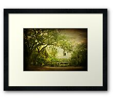 Parker Lake Bridge Framed Print