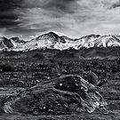 Rock,Snow and lichens by Jeffrey  Sinnock
