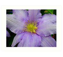 """Am I Blue?"" (floral love song) Art Print"