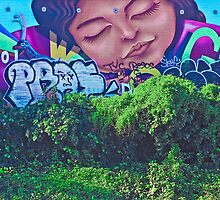 Face of the Barrio by Heather Friedman