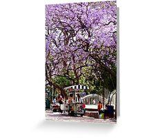 'Jacarandas' in Chapultepec Park Greeting Card