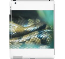 Snakey Scales iPad Case/Skin