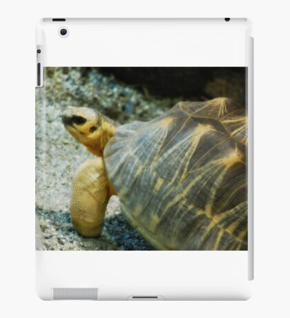 Horned Tortoise iPad Case/Skin