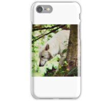 White Wolf iPhone Case/Skin
