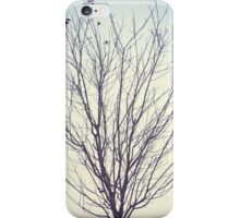 Empty Branches iPhone Case/Skin