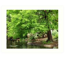 Green Trees Art Print