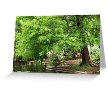 Green Trees Greeting Card