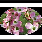 Bubbalicious Pink Blossoms by Darlene Bayne