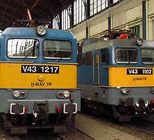 Hungarian Trains by wiggyofipswich