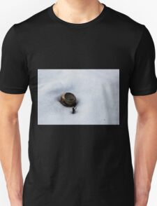Root Beer Can in Snow T-Shirt