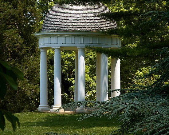 Montpelier Dome by Anthony M. Davis