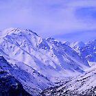 Colorado Chile by Daidalos
