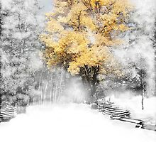 Wind Gust after the snow on a Fall Day by Anthony M. Davis