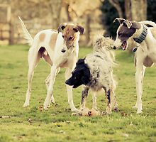 Playtime by Leanne Graham