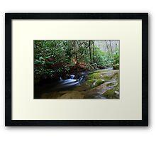 the little stream Framed Print
