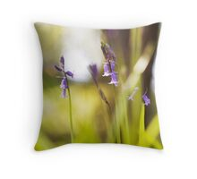 To Transcend - One day in Summer  Throw Pillow