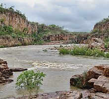Katherine Gorge, NT, Australia by clearviewstock