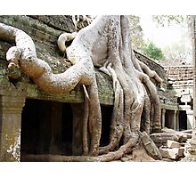 Cambodia. Angkor Wat , Siem Reap 51 Photographic Print