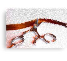 Shear Red-2 Canvas Print
