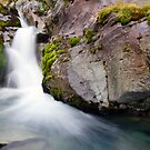 South Georgia Silky waterfall by Michael S Nolan