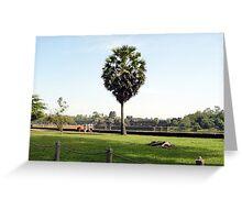 Cambodia. Angkor Wat , Siem Reap 63 Greeting Card