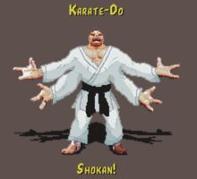 Karate do Shokan by JeffreyS