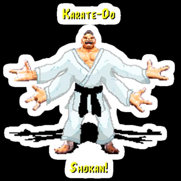 Karate do Shokan by JeffreyS