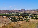 Near Gundagai, NSW, Australia by Margaret  Hyde
