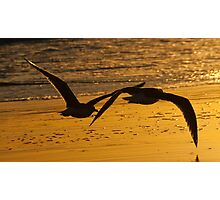Sunset Perspective Photographic Print