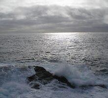 Cape Spear by Oil Water Artt