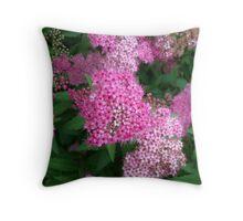 Pink Sprinkles Throw Pillow