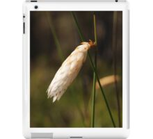 Hooded Lily - Margaret River  iPad Case/Skin
