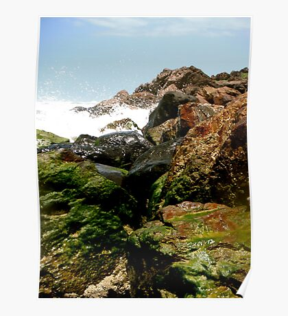 Moss on the Rocks Poster
