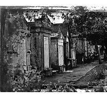 Old Bones Photographic Print