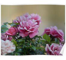 Spring floral composition  Poster