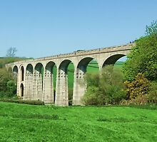 The Cannington Viaduct At Uplyme by lynn carter