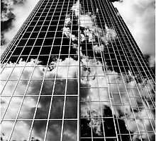 Babel by Polar Impressions  Photography