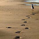Not my Footprints by Jason Dymock Photography