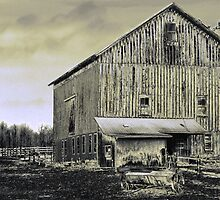 Big Ol' Barn by Marcia Rubin